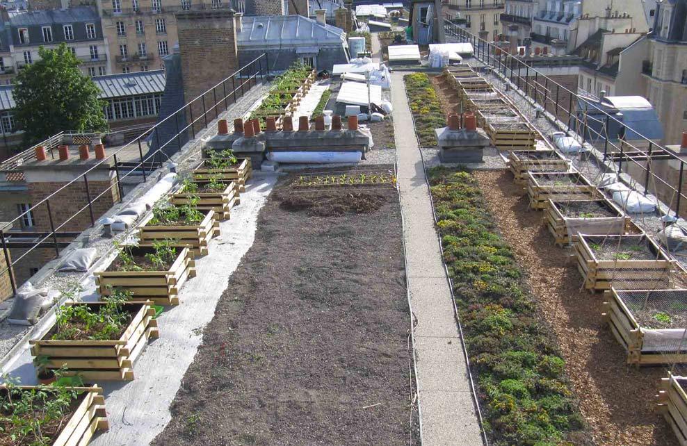 http://www.agroparistech.fr/+Le-Monde-sur-les-toits-d+.html