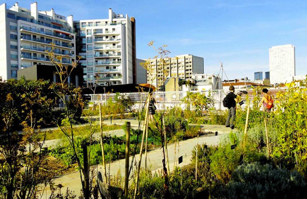 http://unpetitpoissurdix.fr/2014/10/26/le-jardin-sur-le-toit-rue-des-haies-paris-20e/