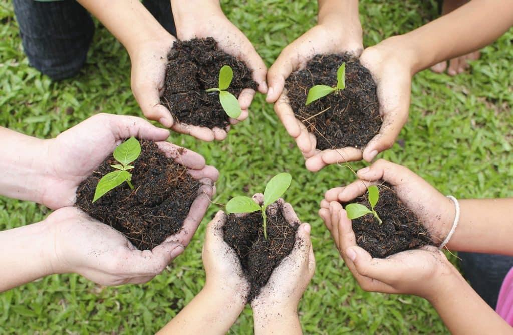 5 raisons d'initier les enfants au jardinage