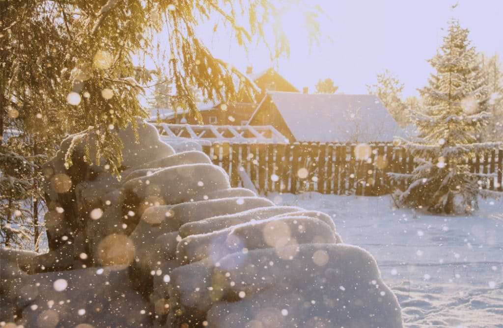 Les bienfaits de la neige pour votre jardin