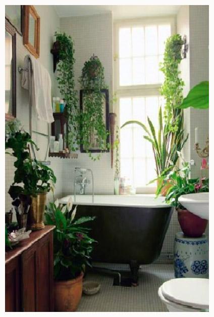 Salle de bain jungle