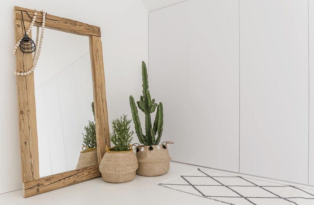 5 manières de sublimer les cactus dans votre intérieur
