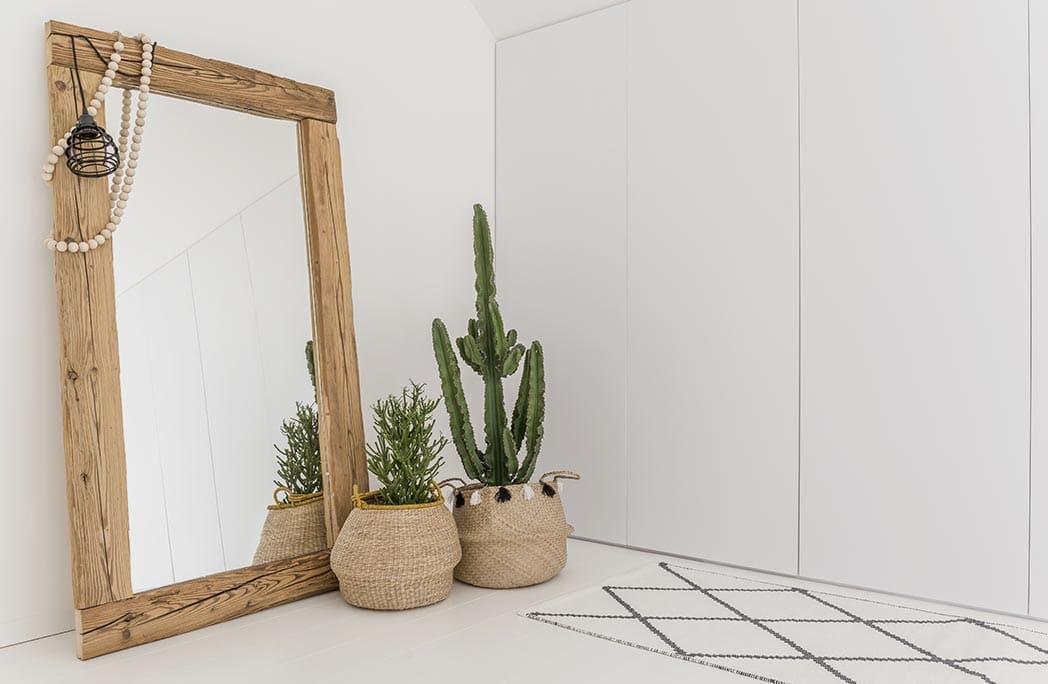 cactus dans des caches-pots en osier devant un miroir