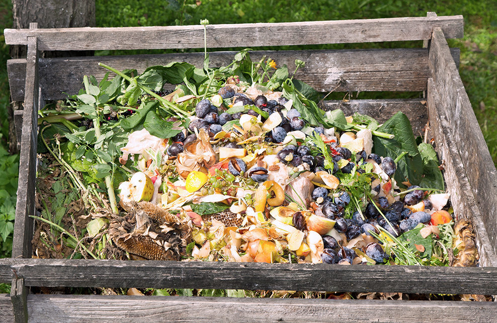 c 39 est d cid je fais mon compost depuis mon hamac. Black Bedroom Furniture Sets. Home Design Ideas
