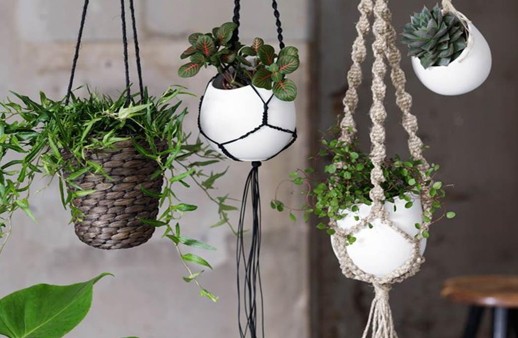 interesting deco une cuisine vgtale pour une ambiance bohme with suspension fleur exterieur. Black Bedroom Furniture Sets. Home Design Ideas