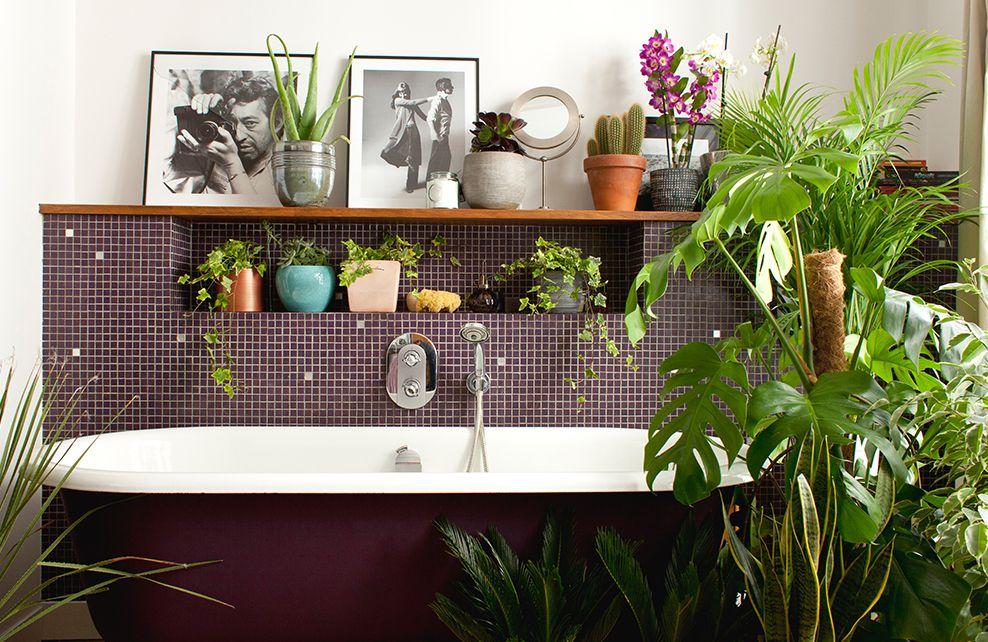 deco optez pour une salle de bain tropicale depuis mon hamac. Black Bedroom Furniture Sets. Home Design Ideas