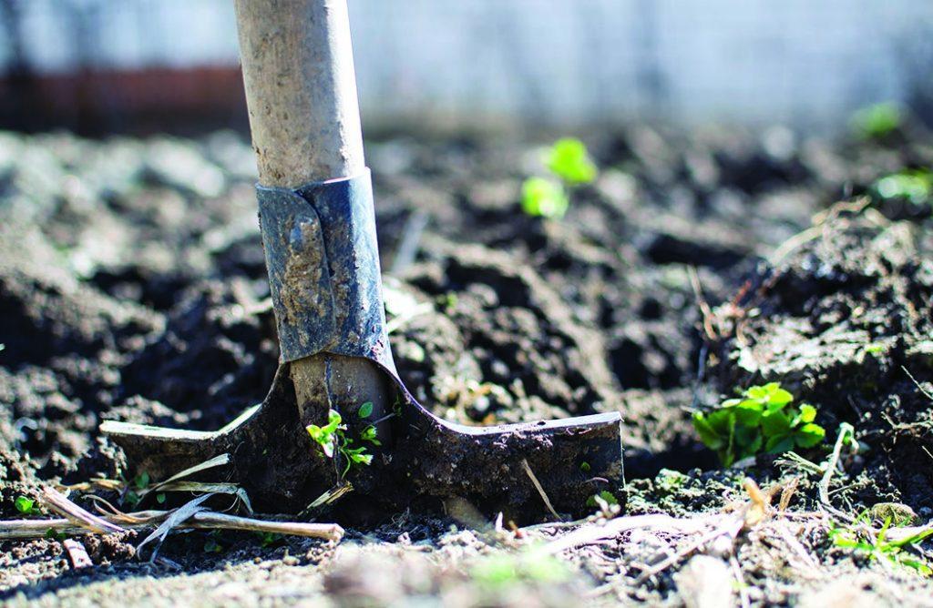 Les bons gestes du jardinier écolo