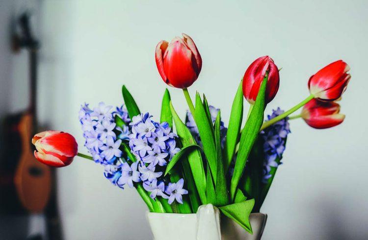 bouquet de tulipes et lila dans vase