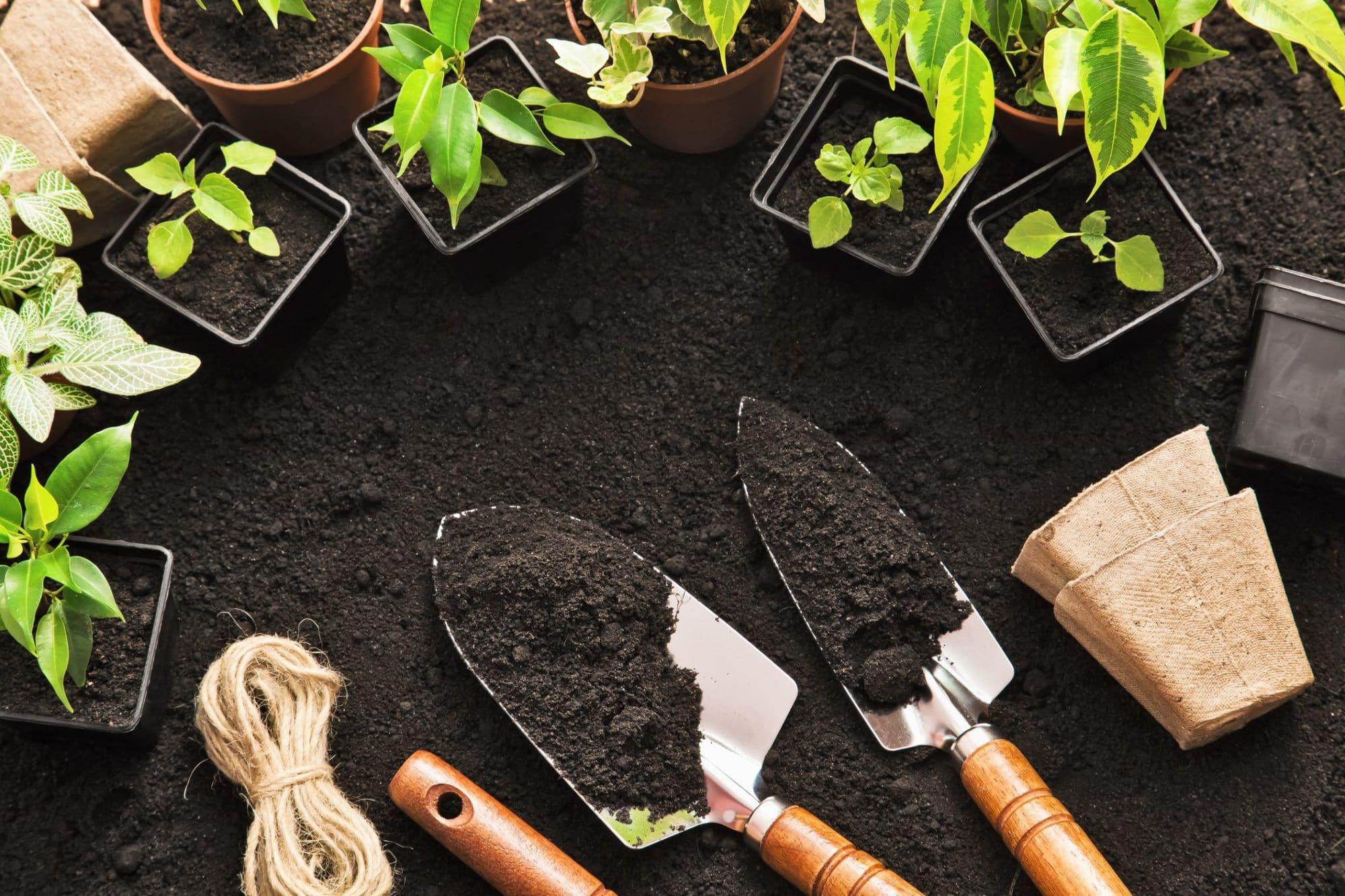 outils de jardinage dans le terreau