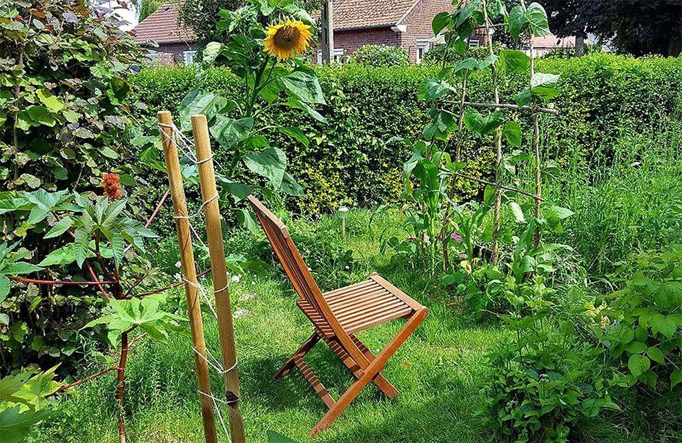 chaise en bois dans jardin permaculture