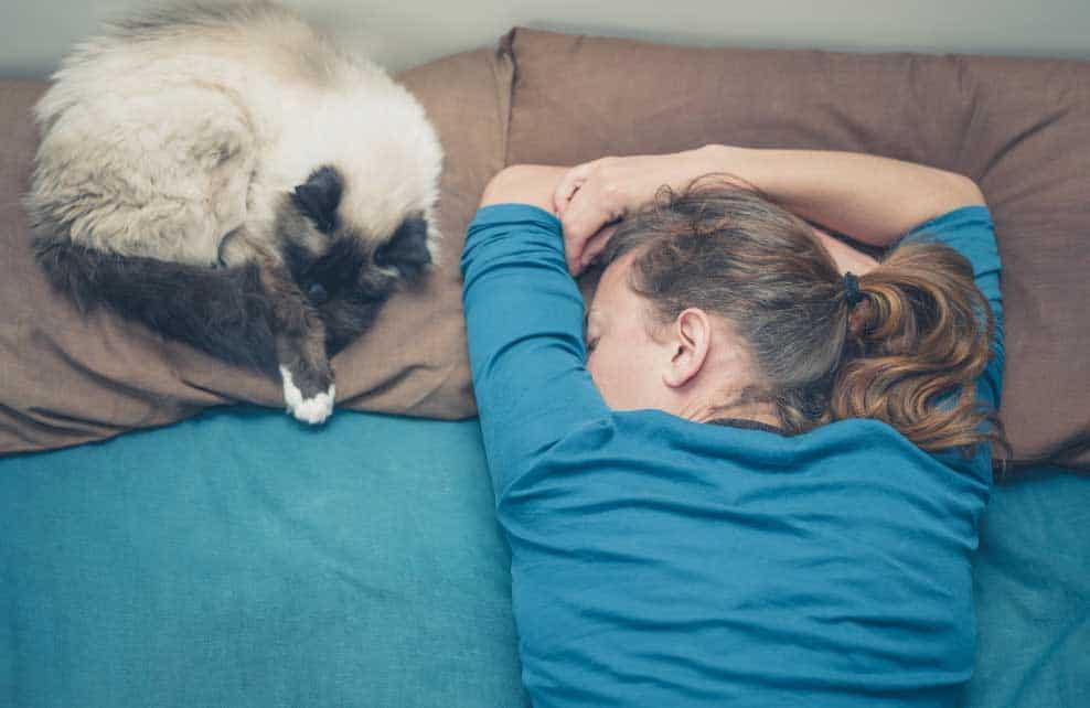 femme et siamois profondément endormi sur un lit