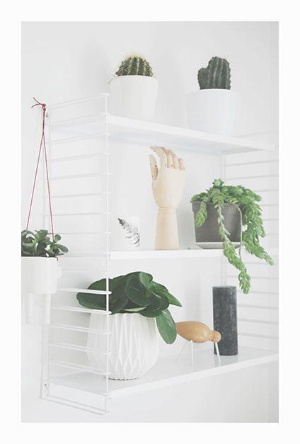 etagere vegetale