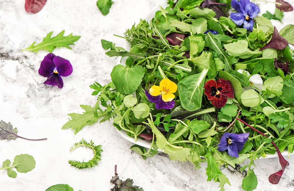 Fleurs de pensées dans salade