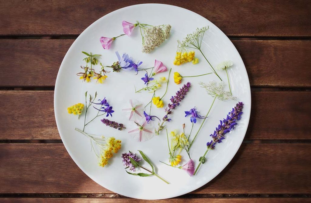 #FOOD : 10 fleurs comestibles au menu
