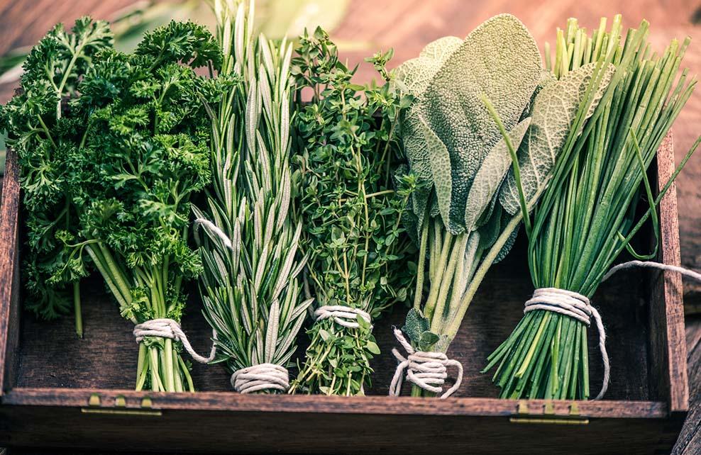 herbes aromatiques dans caisse en bois