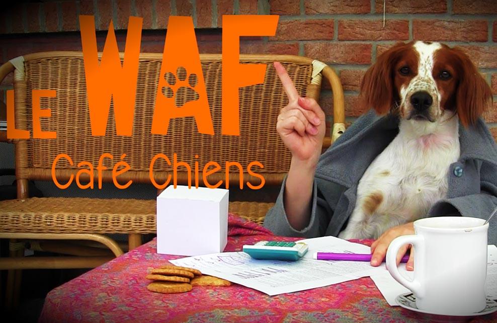 Le waf, café chiens à Lille