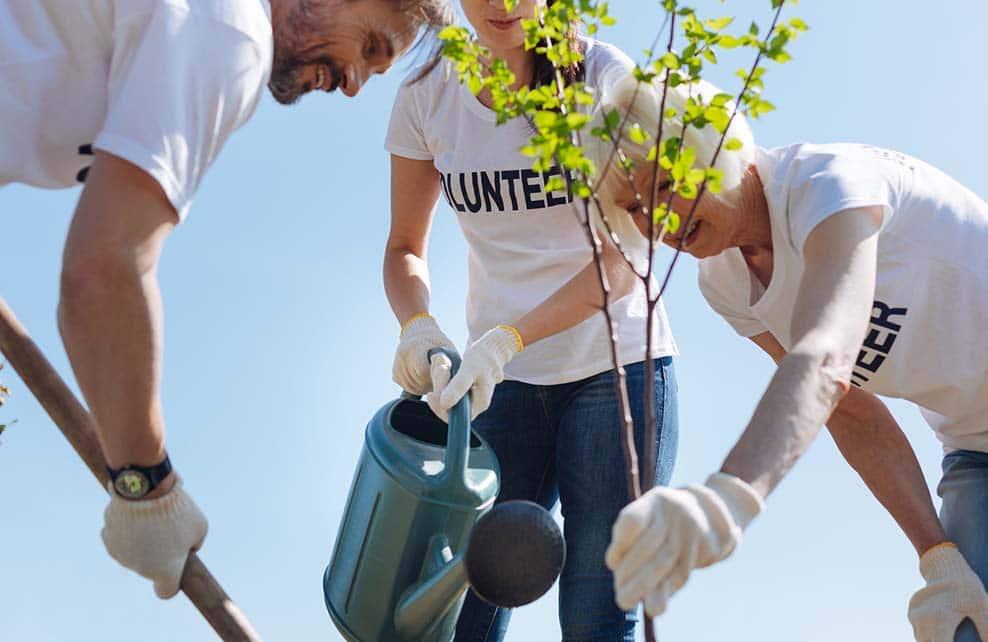 Jeunes bénévoles jardinant