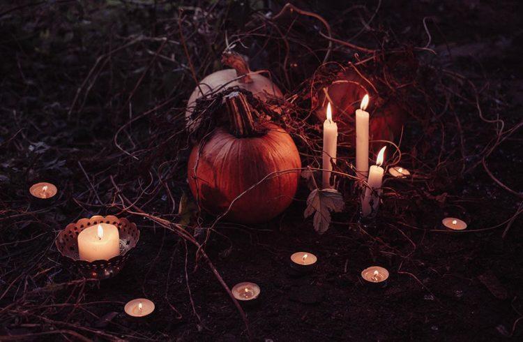bougies et citrouille disposés sur la terre