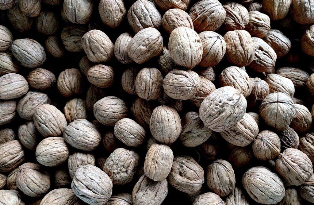 #FOOD : Pour votre santé, mangez des noix !