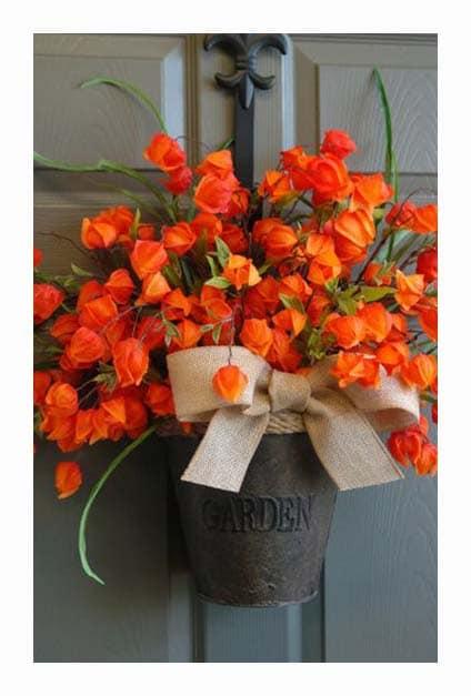 Bouquet de physalis accroché sur une porte