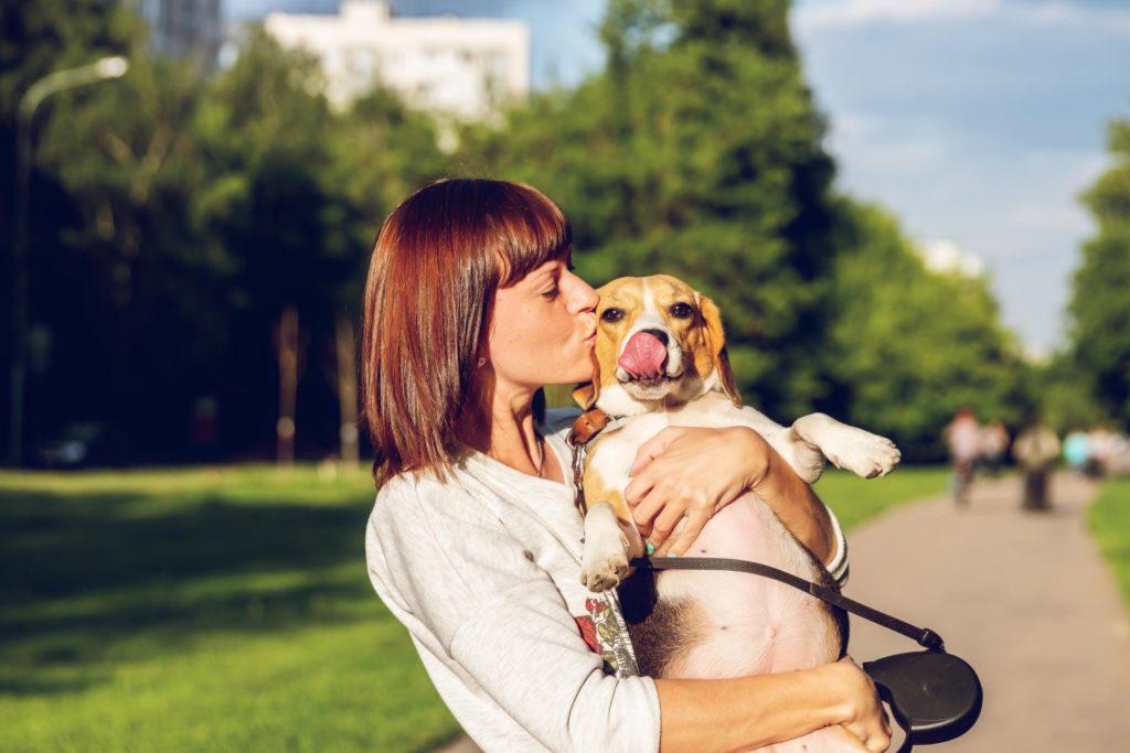 Parler à son animal de compagnie : une preuve d'intelligence