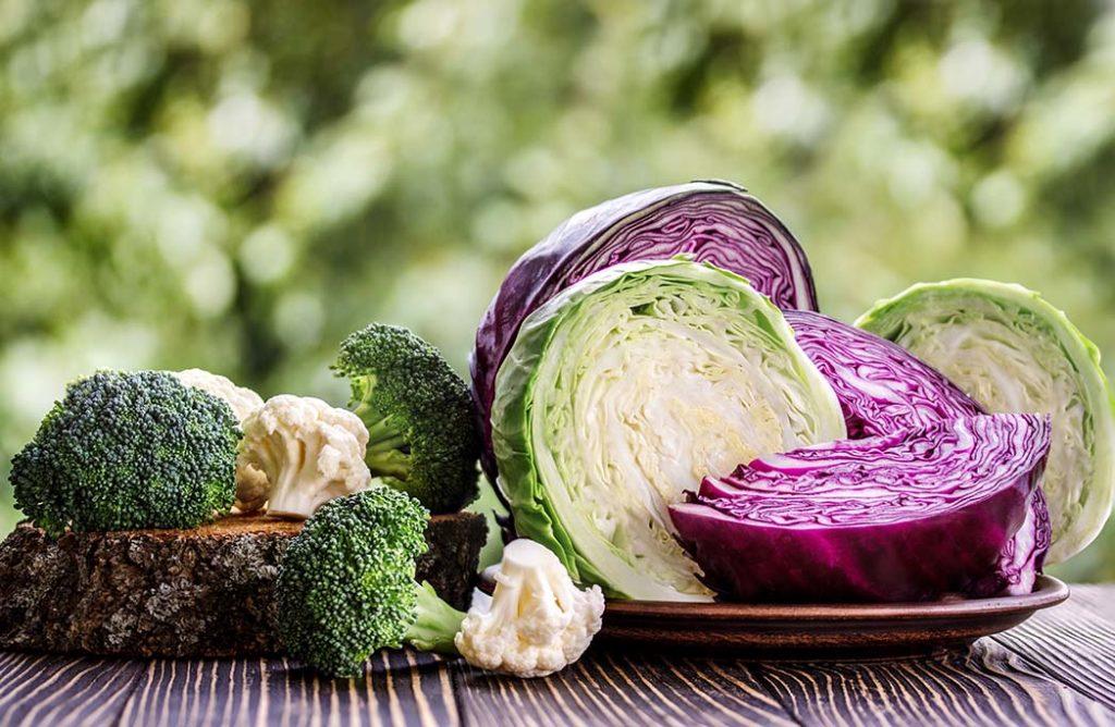 #FOOD : Cet hiver, mangez du chou !