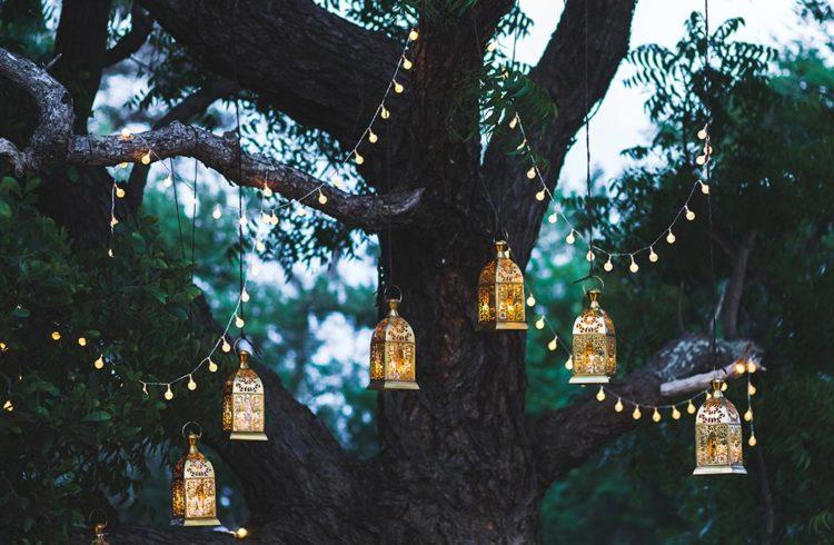 lampions accrochés à une guirlande suspendue dans un arbre