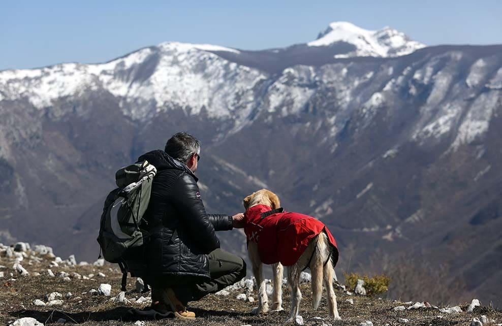 Maitre chien avalanche et son chien en haut d'une montagne