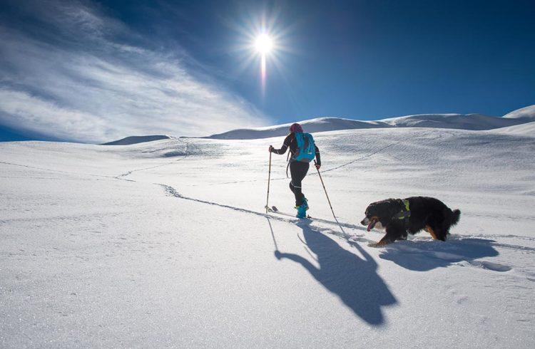 Jeune femme faisant du ski de fond à la montagne avec son chien
