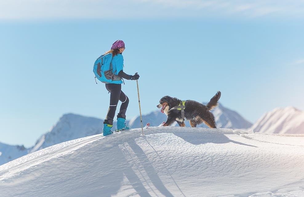 Jeune femme sur des skis et un chien à la montagne