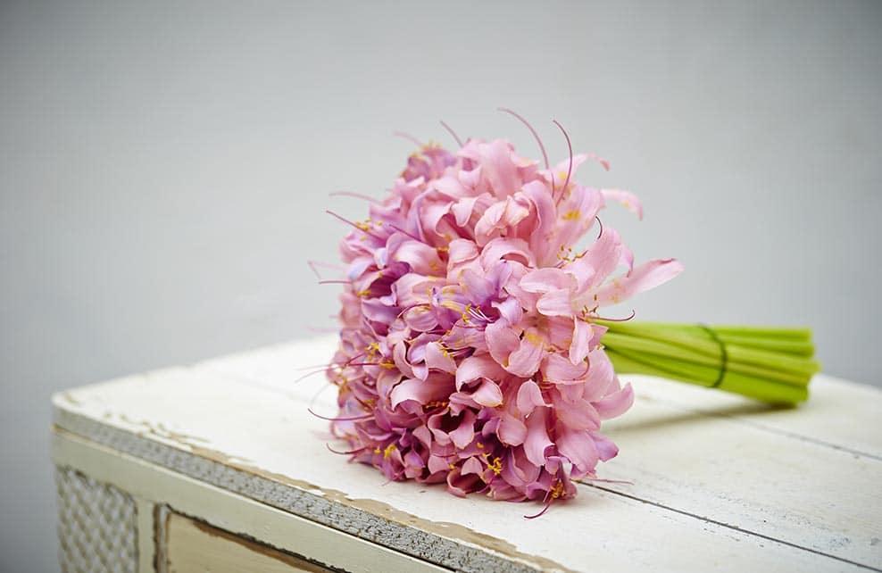 Bouquet d'azalées posé sur une table