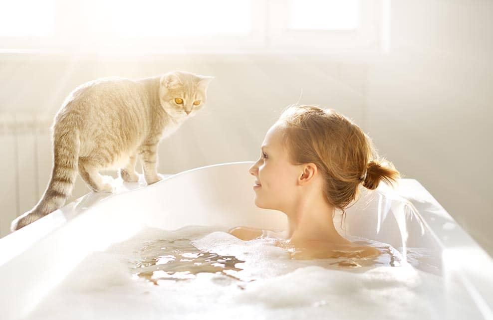 chat au bord de la baignoire dans laquelle sa maîtresse prend un bain
