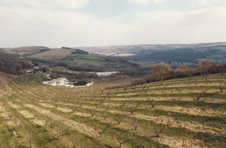 Collines d'Anneyron dans la Drôme