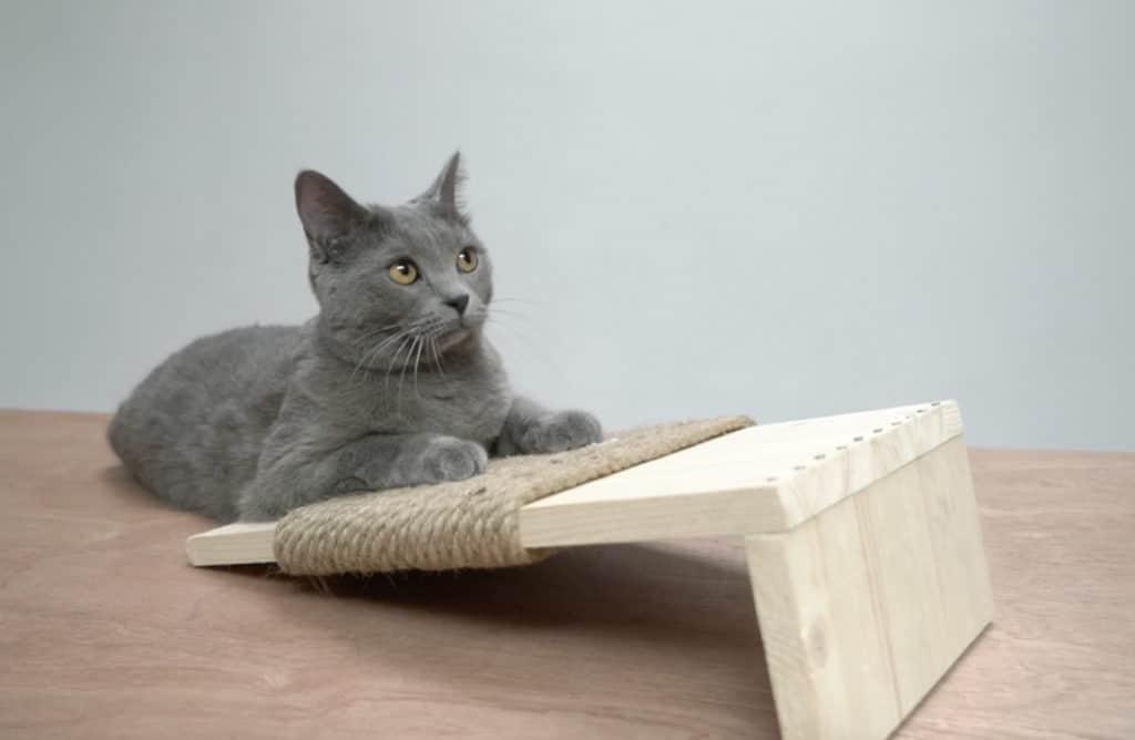 #DIY : Créer un griffoir design pour son chat