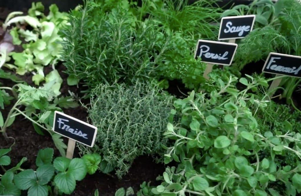 #DIY : Créer une jardinière aromatique à partir de palettes