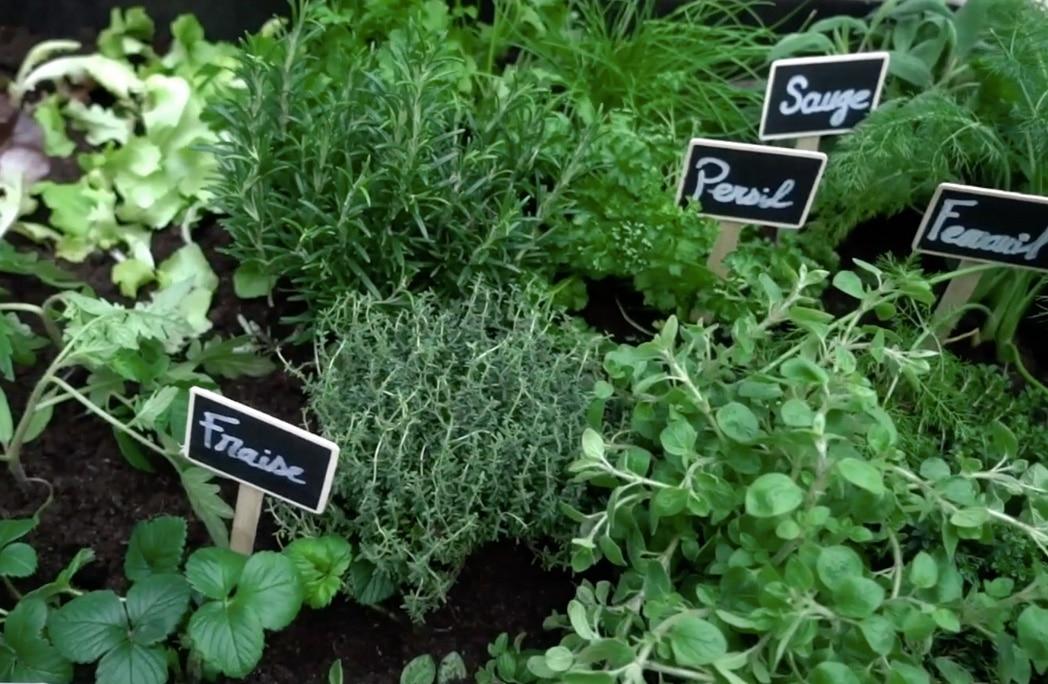 diy cr er une jardini re aromatique partir de palettes depuis mon hamac. Black Bedroom Furniture Sets. Home Design Ideas