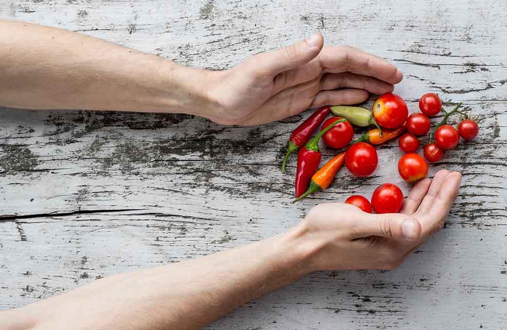 Récolte de tomates cerises et mini poivrons