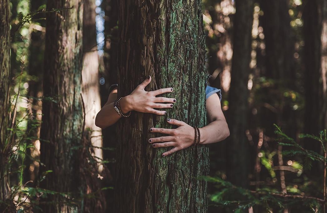 Bras et mains d'une jeune femme enlaçant un arbre