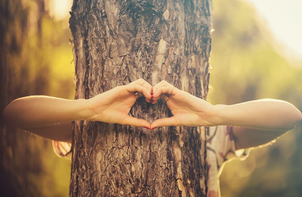 Faire des câlins aux arbres : pourquoi vous allez vous y mettre