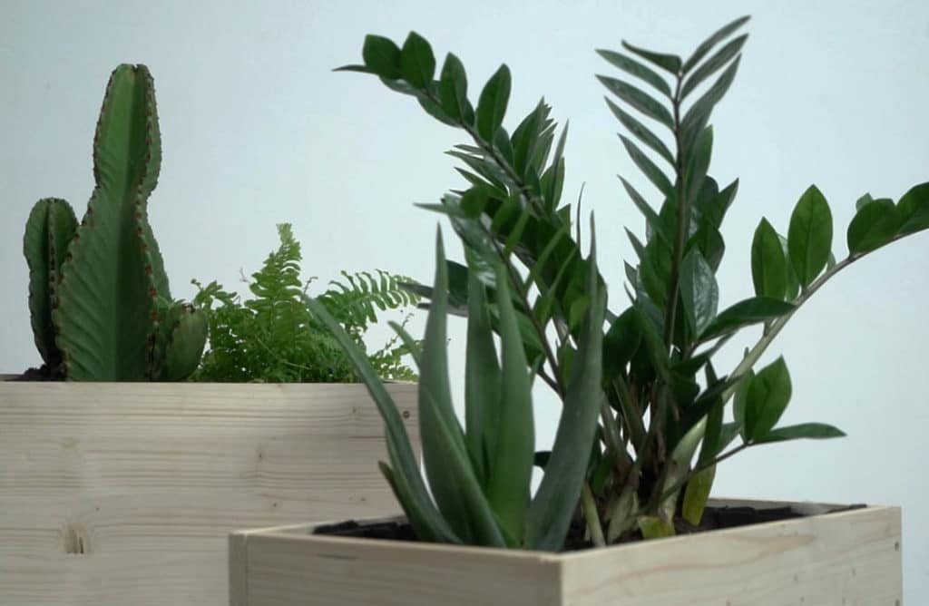 #DIY : Créer des jardinières nordiques