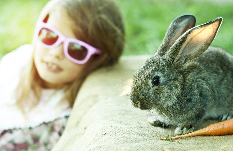 Petite fille avec des lunettes de soleil assise à côté d'un lapin
