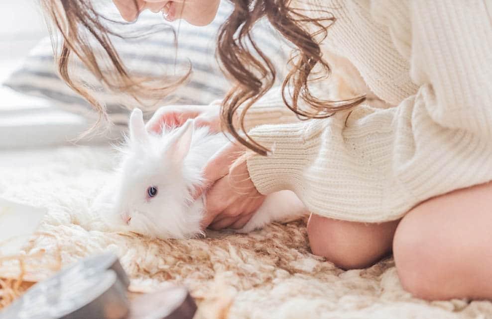 Femme avec lapin sur un tapis