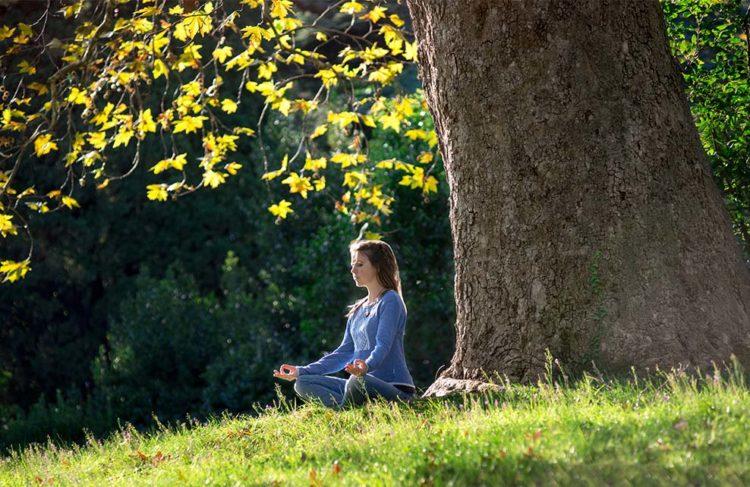Femme méditant sous un abre