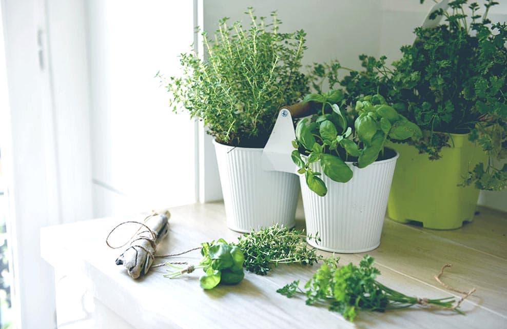 Etape 2 de réalisation du DIY herbes séchées