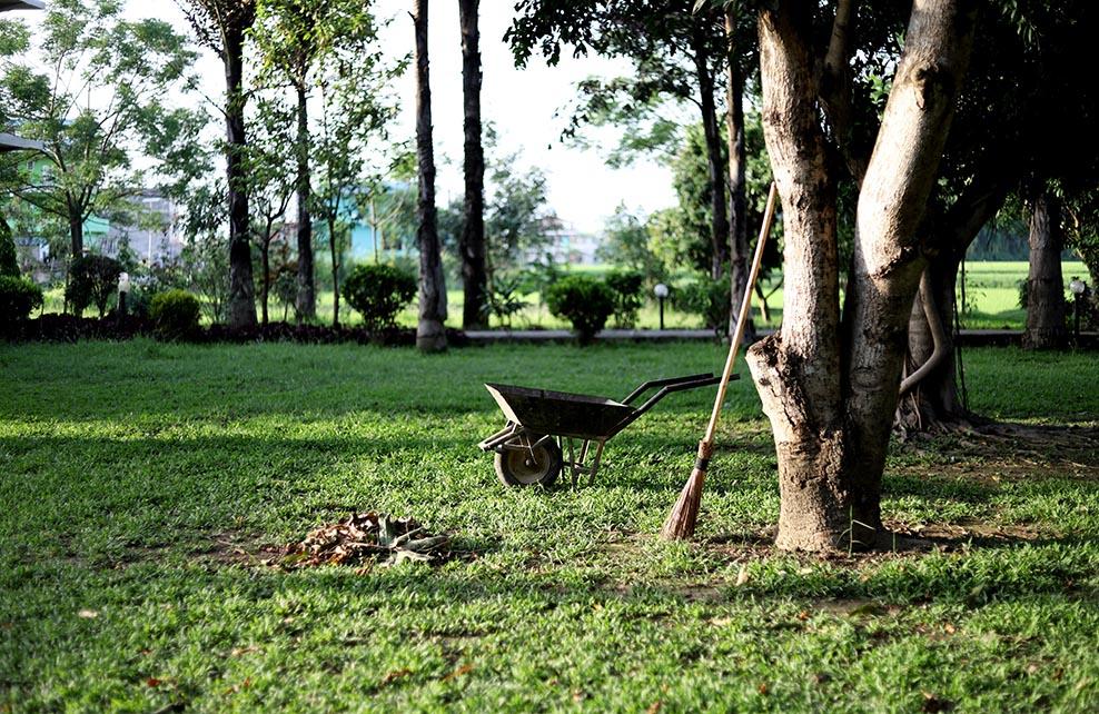 Brouette et balai au milieu d'un jardin