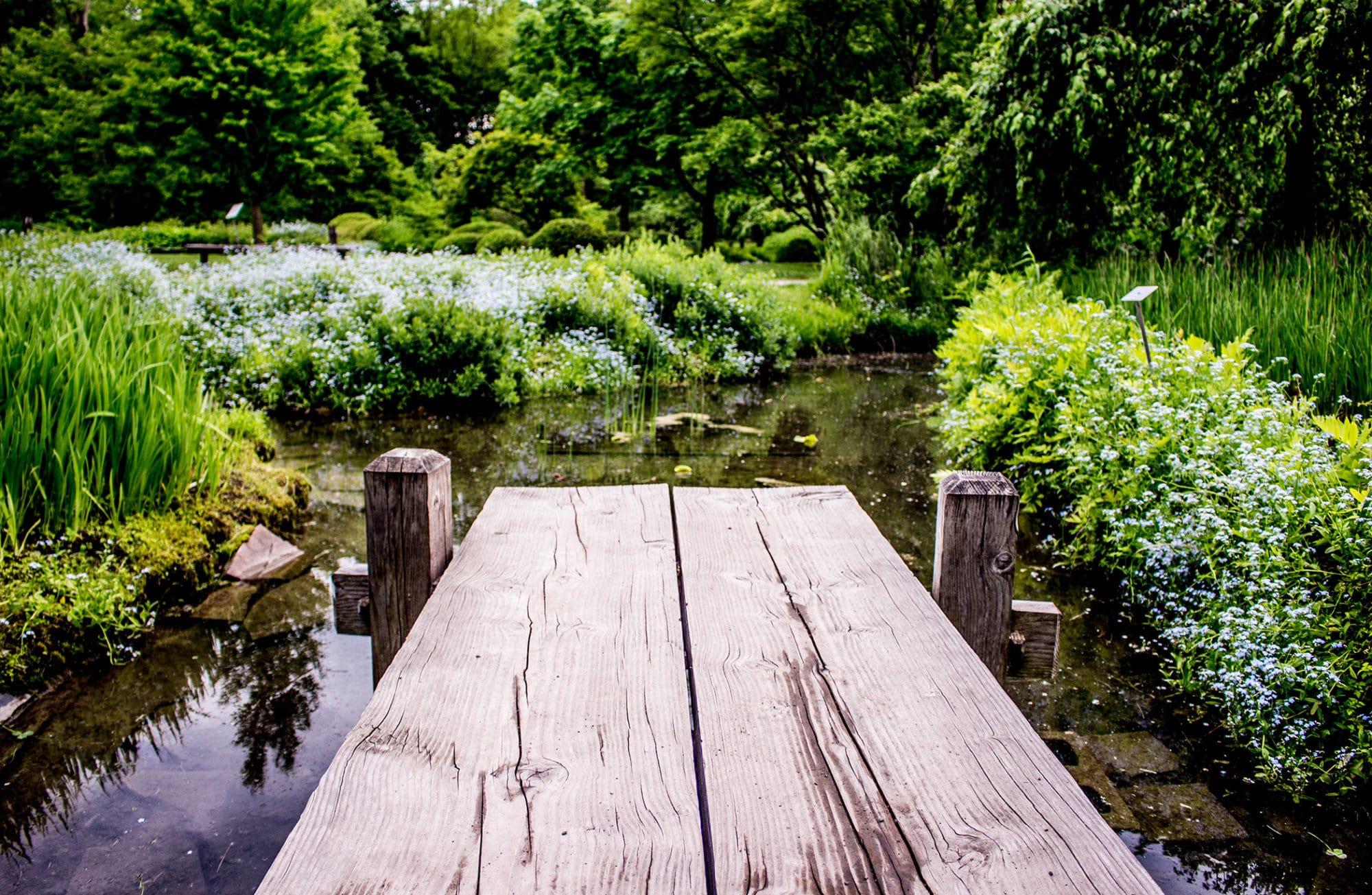 9 conseils pour un jardin 100% Feng Shui