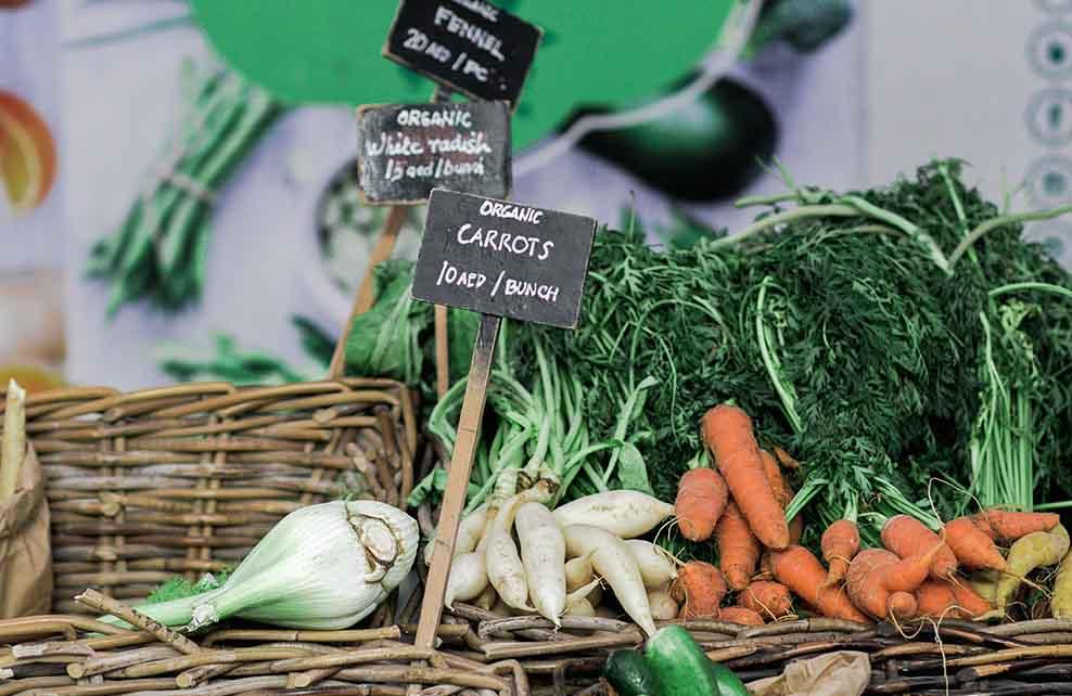 Légumes bio sur un étalage