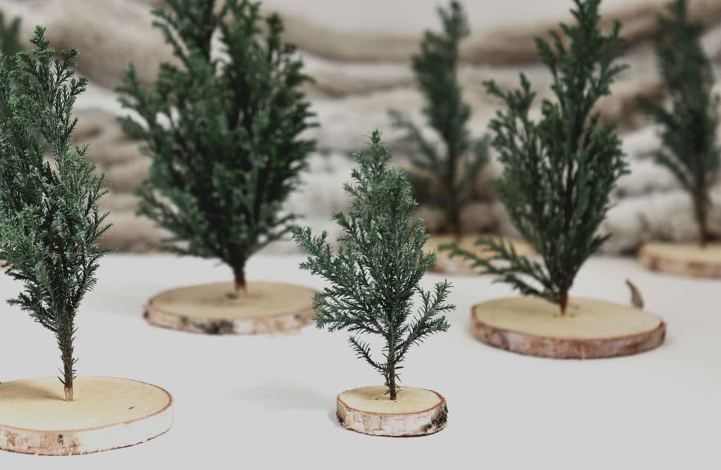 #DIY : Mes mini-sapins de table