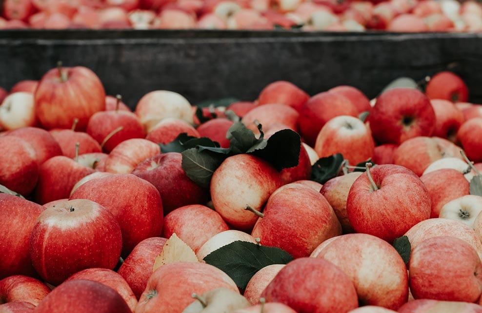 Pommes sur un étalage