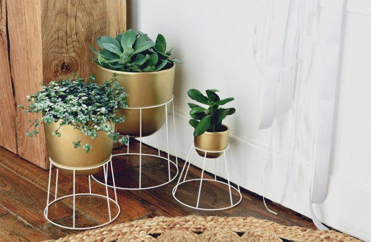 DIY mon porte-plantes